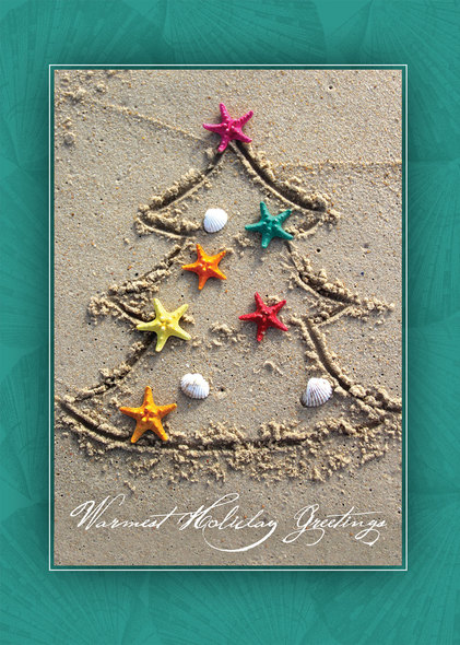 Beach Christmas Cards >> Tropical Tree Beach Christmas Cards Warm Weather Holiday